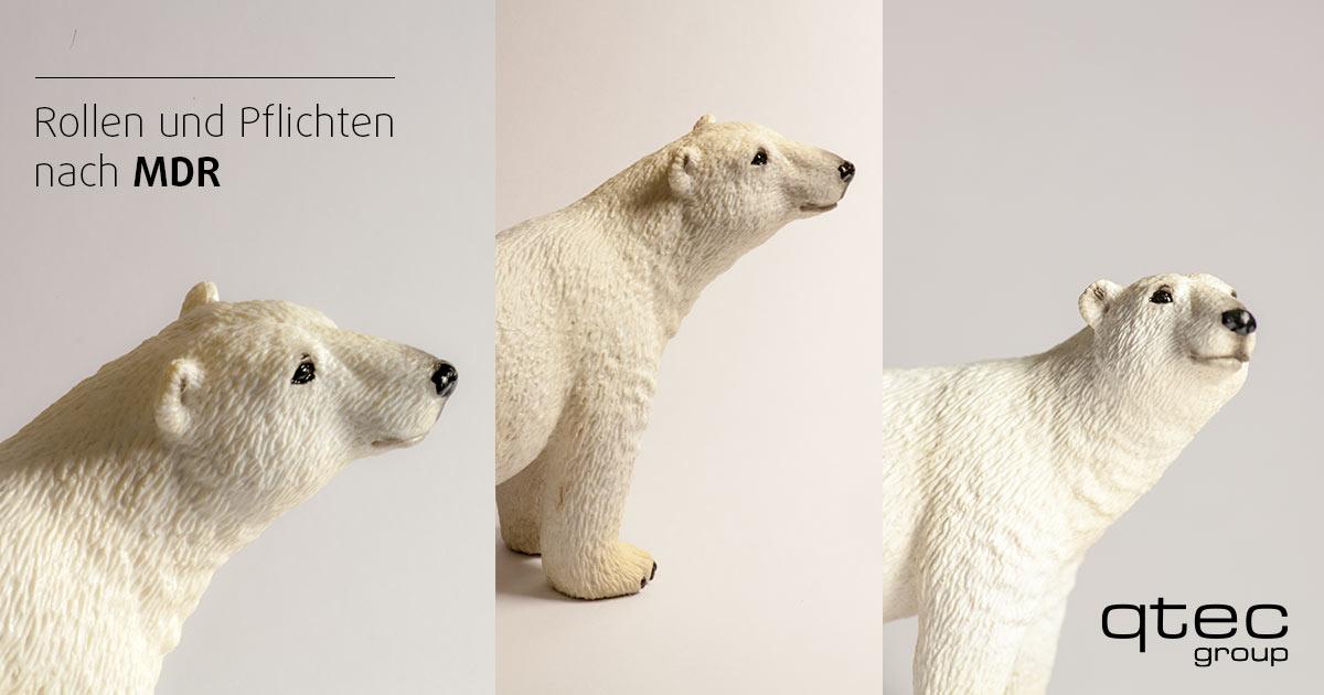 Drei Eisbären: Rollen und Pflichten MDR, qtec| qtec-group