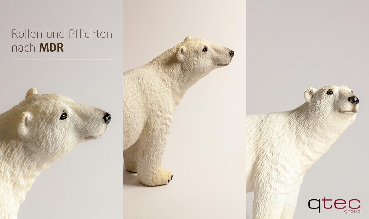 Drei Eisbären: Rollen und Pflichten MDR, qtec