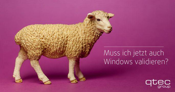 Validierung Windows