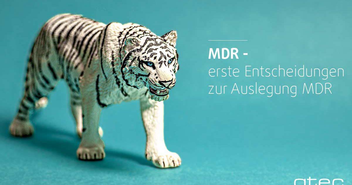 Medical Device Regulation - erste Entscheidungen zur Auslegung MDR