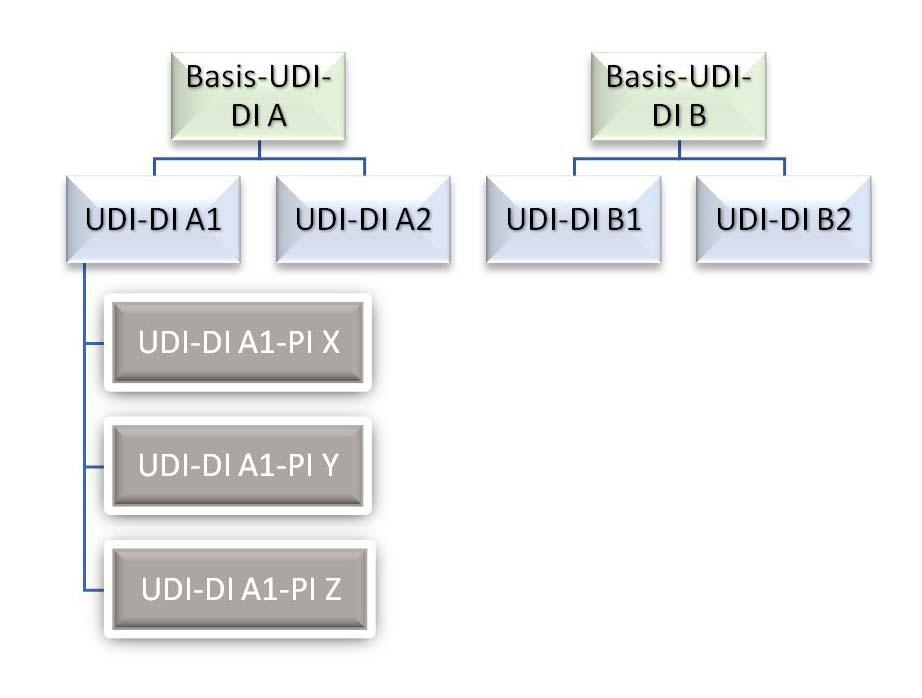 qtec | UDI: Grundlagen und Wissenswertes zur Orientierung Infografik
