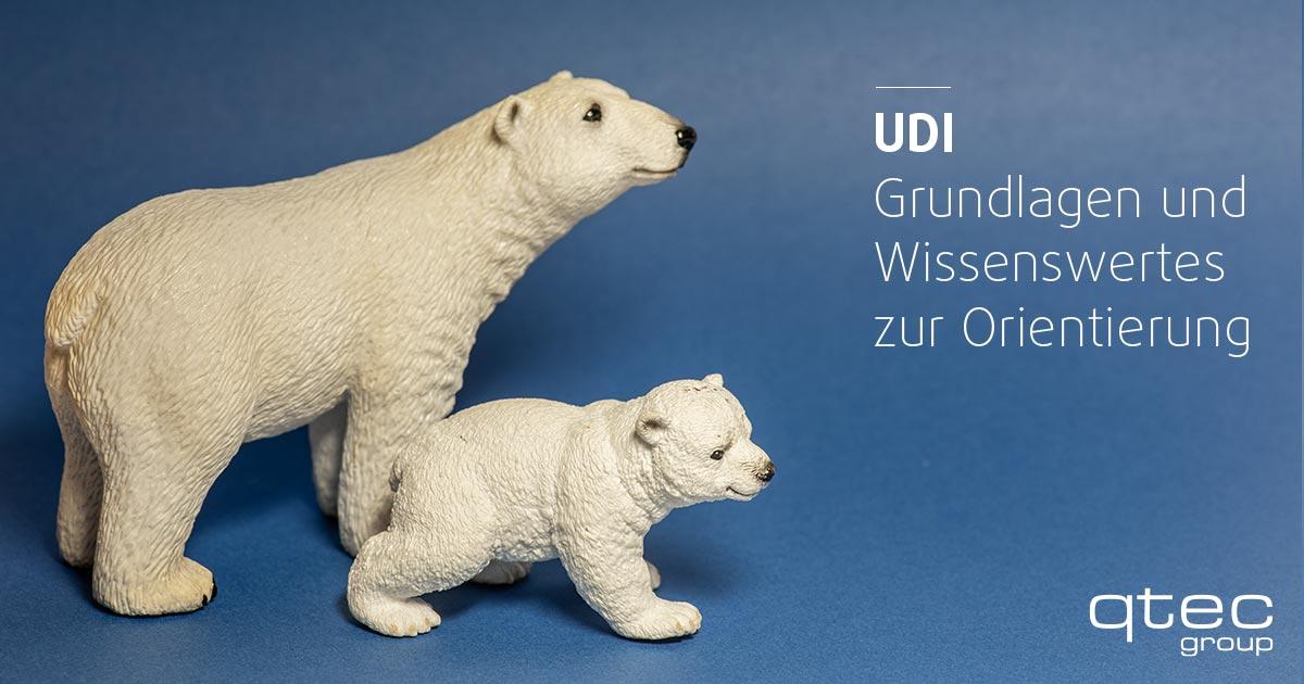 qtec | UDI: Grundlagen und Wissenswertes zur Orientierung| qtec-group