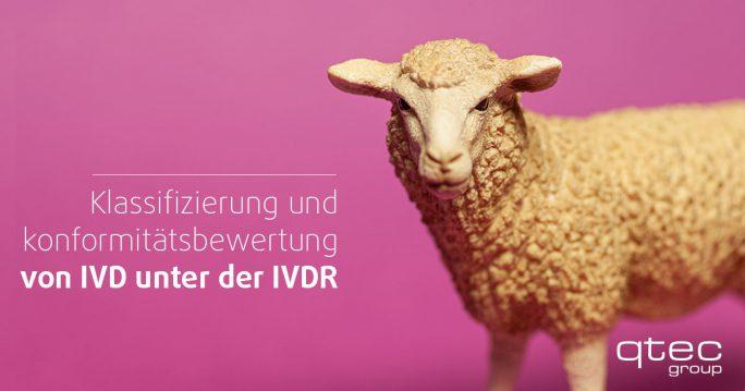qtec-BlogbeitragKlassifizierung von IVD unter der IVDR Poster
